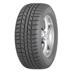 GOODYEAR WRL HP all sesson2