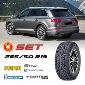 Q7-265-50-R19-MICHELIN-STING-QUANTUM